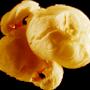 popcorn2-2.png